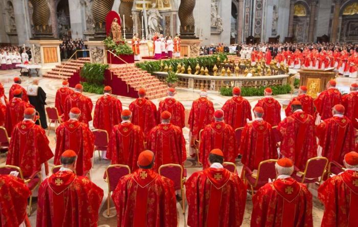 cardinal_03-e1427404021175