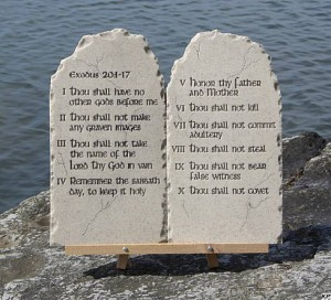 10 zapovedej